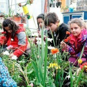 floricultura - loragintza