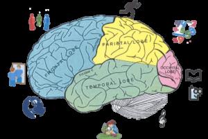 estimulación de las inteligencias