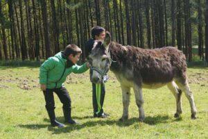 actividades de los campamentos  udalekuen ekintzak
